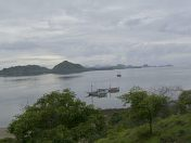 View from Komodo
